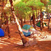 bl-inzir-tents2