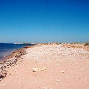 Дары Моря - песочек