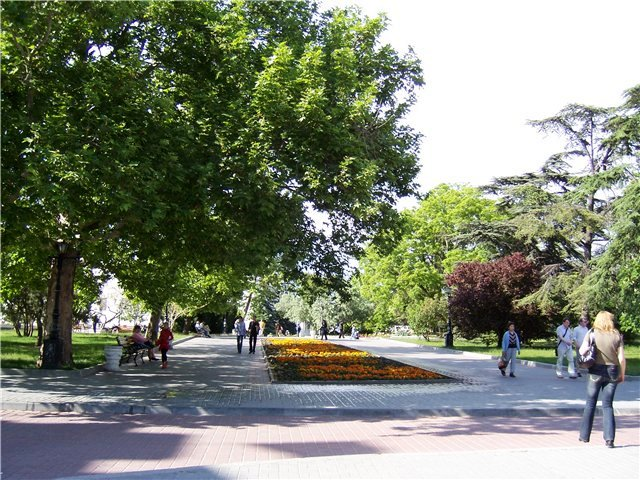 Приморский парк 2